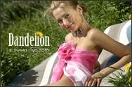 Lilya | Dandelion